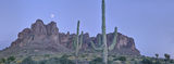 Panoramic, landscape, photography, moonrise, twilight, Arizona, Superstitions, sonoran, desert, spring, cactus, saguaro, paysage, lune, photographie, panoramique, printemps